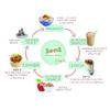 Food Circle 1